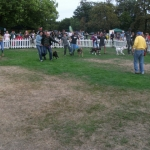 seven-legged-race-i-jpg