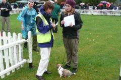 2011 Fun Dog Show