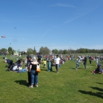 streatham-common-kite-day-2011-1-jpg