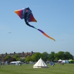 streatham-common-kite-day-2011-26-jpg