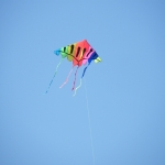 streatham-common-kite-day-2011-29-jpg