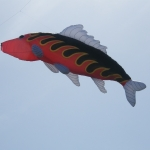streatham-common-kite-day-2011-32-jpg