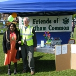 streatham-common-kite-day-2011-40-jpg
