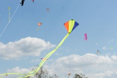 kite-day-2016