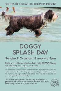 DOGGYSPLASHDAY2017