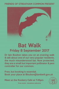 batwalk2017_brown