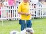 2014 Fun Dog Show