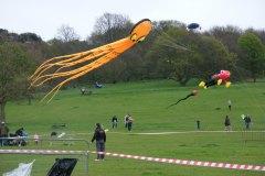 kite-day-2014