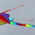 kite2014-d-jpg