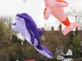 kite2014-f-jpg