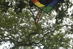 kite-day-2015