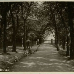 The Grove - early 1900s