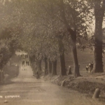 The Avenue, now Streatham Common South undated