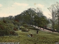 Streatham Common South 1905