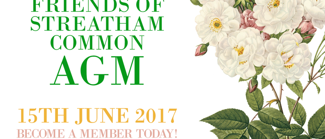 Friends of Streatham Common AGM