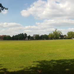 streatham common july 2017 logrady