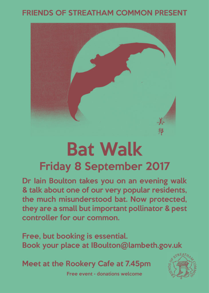 Bat Walk 08 September 2017 19:45