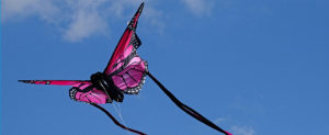 kite day 2018