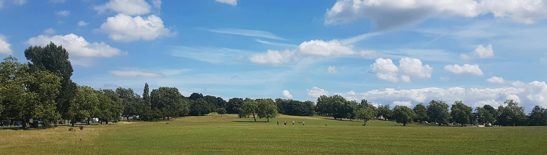 Friends of Streatham Common