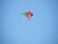 streatham-common-kite-day-2011-29-jpg