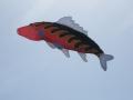 streatham-common-kite-day-2011-32-jpg