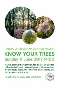 KNOWYOURTREES_JUNE2017