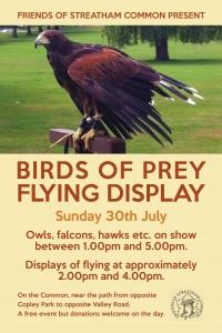 birds of prey 2017