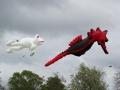 kite2014-b-2-jpg