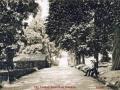 The Avenue 1907