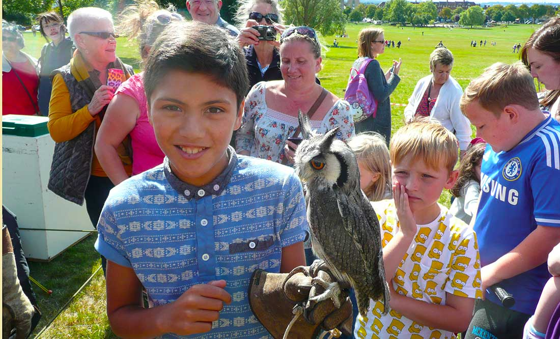 Birds of Prey Flying Display 30 July 2017 @ 13:00